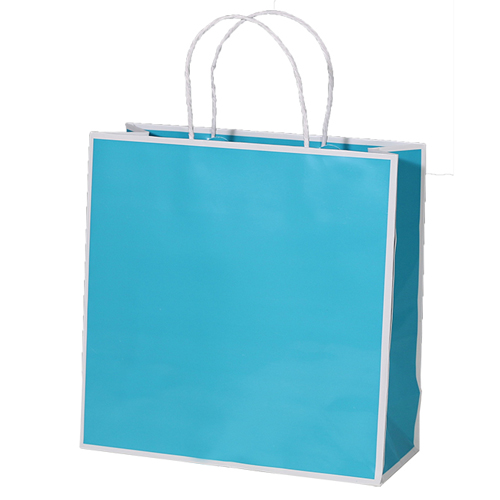 10 x 4 x 10 TURQUOISE WITH WHITE TRIM PAPER SHOPPING BAGS