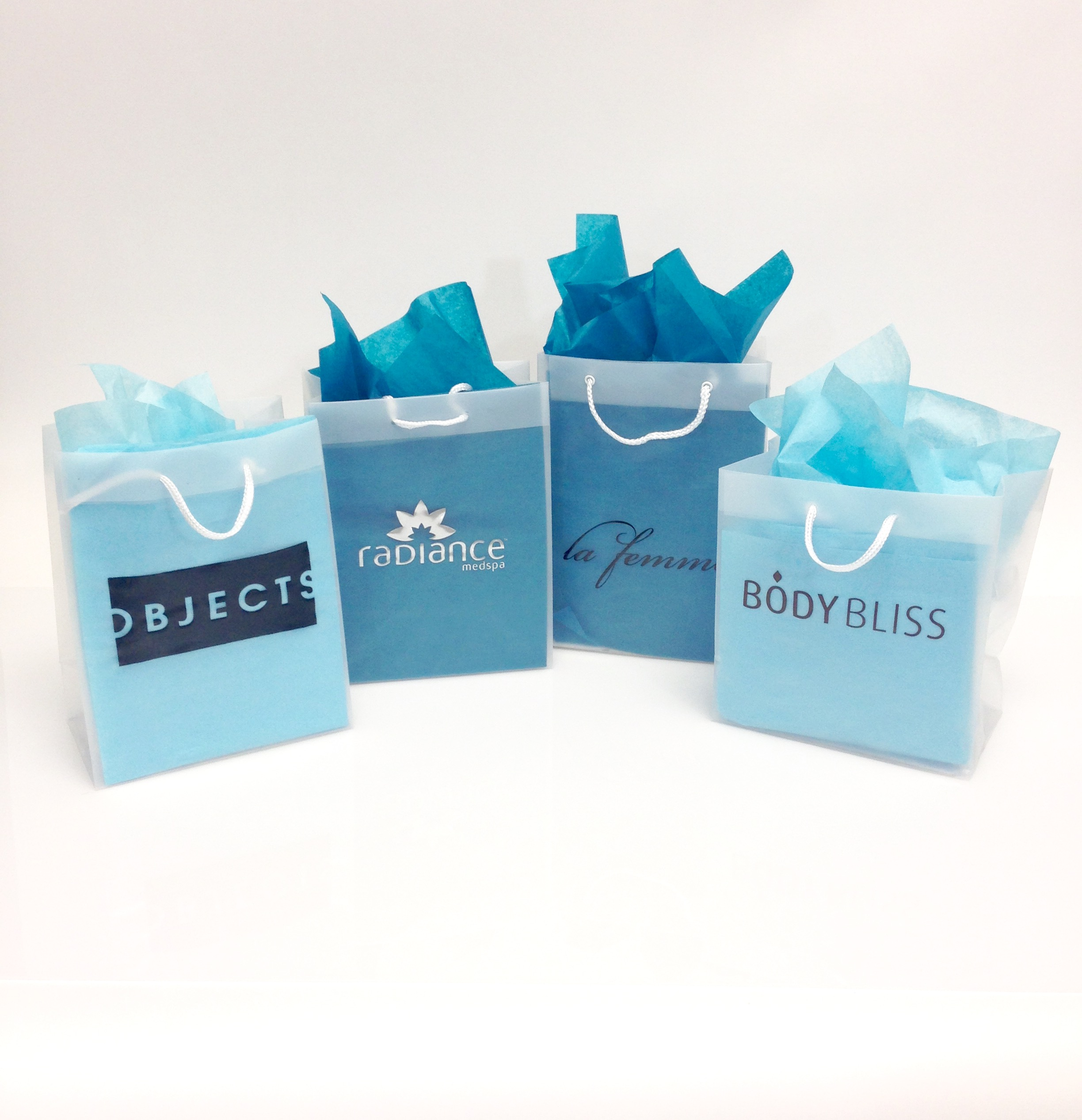 Printed Plastic Eurotote Shopping Bags - Custom Printed