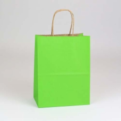 8 x 4.75 x 10.5 APPLE GREEN MATTE SHADOWSTRIPE PAPER BAGS