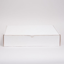 19 x 12 x 3 WHITE CORRUGATED TUCK-TOP MAILING BOXES