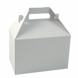 8 x 5 x 5.25 WHITE GLOSS GABLE BOXES