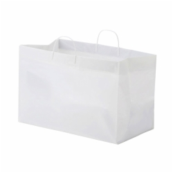 19 x 10 x 12 PLASTIC CATERING BAGS WITH RIGID CLIP LOOP HANDLES
