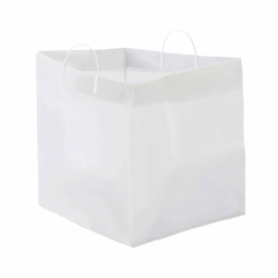 18 x 17 x 18 PLASTIC CATERING BAGS WITH RIGID CLIP LOOP HANDLES