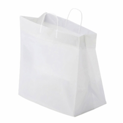 14 x 10 x 14.75 PLASTIC CATERING BAGS WITH LOOP HANDLES