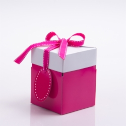 4 x 4 x 4.75 FUCHSIA POP UP BOX
