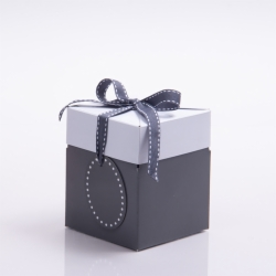 4 x 4 x 4.75 SLATE GRAY POP UP BOX