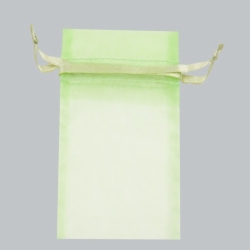 5.5 x 9 MINT SHEER ORGANZA POUCHES